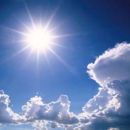 Zonbescherming